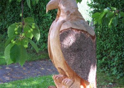 Adler-20050006
